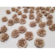 Розы бежевые