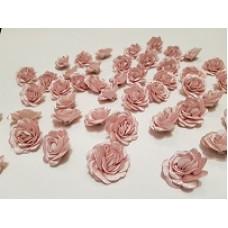 Розы пудра