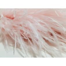 Страусиные перья на ленте бледно розовый