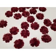 Цветы бордо
